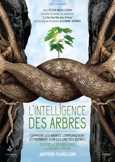 affiche L'Intelligence des Arbres