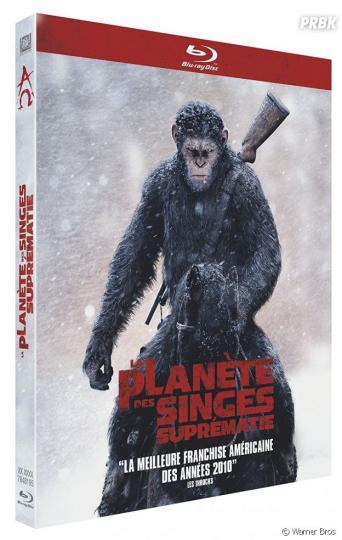 affiche La Planète des singes : Suprématie