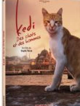 affiche du film Kedi - Des chats et des hommes